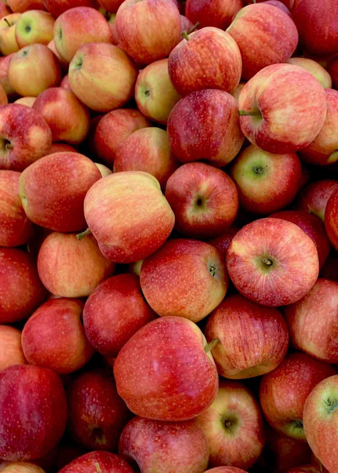 Comment faire un jeûne détox aux pommes