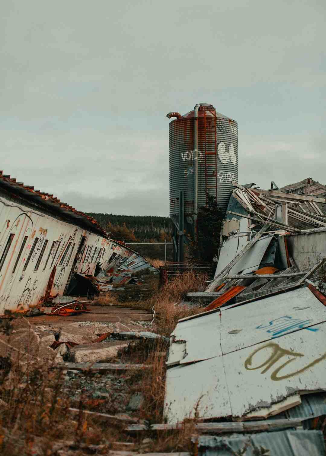 Comment survivre à un tremblement de terre